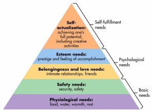 maslows-pyramid-of-needs-most-important-at-the-bottom-of-pyramid